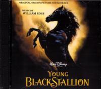 YOUNG BLACKSTALLION ヤング・ブラックスタリオン