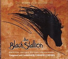 THE BLACK STALLION ワイルドブラック 少年の黒い馬